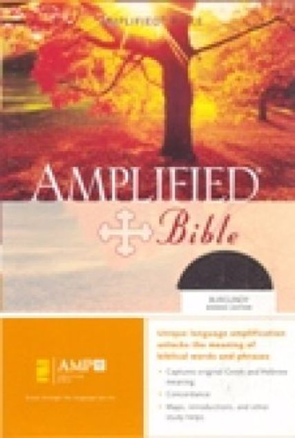 Picture of Amplified Bible,Burgundy,Bonded Leather,Thumb Index