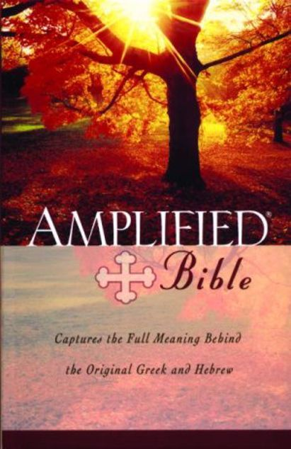 Picture of Amplified Bible