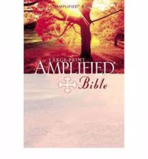 Picture of Amplified Bible Lp