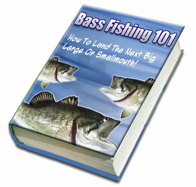 Picture of Bass Fishing 101