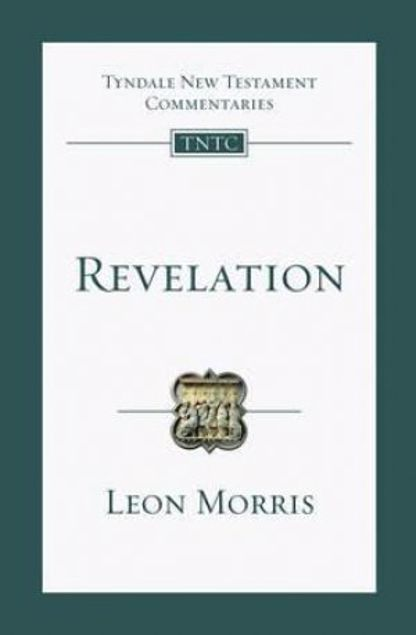 Picture of Revelation: An Introduction And Commentary