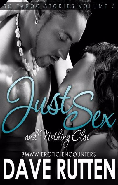 Picture of Just Sex And Nothing Else: BMWW Erotic Encounters So Taboo Stories Vol. 3