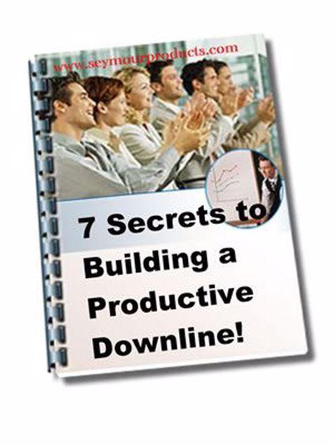 Picture of 7 Secrets Of Building A Productive Down-line !
