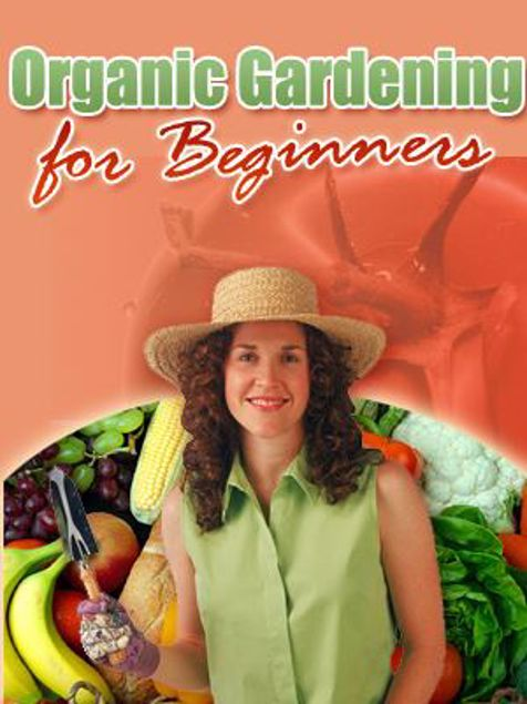 Picture of Organic Gardening For Beginners