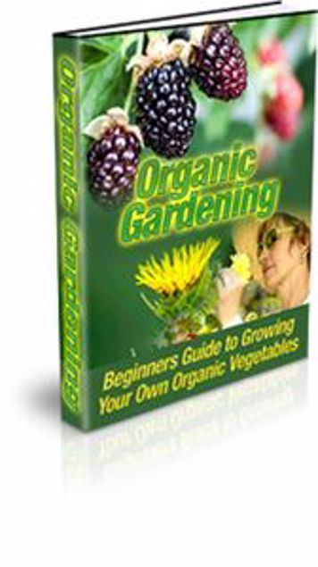 Picture of Organic-Vegetable-Gardening