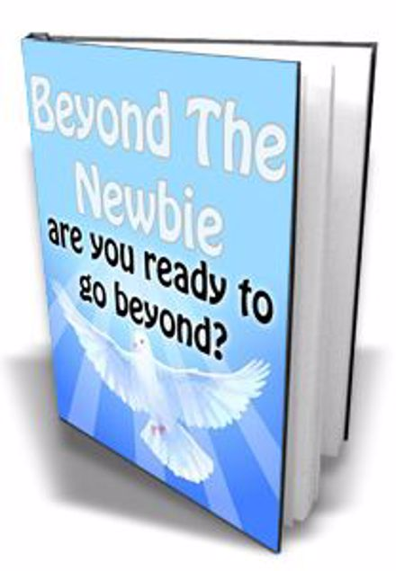 Picture of Beyond The Newbie
