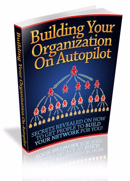 Picture of Build Your Organisation On Autopilot