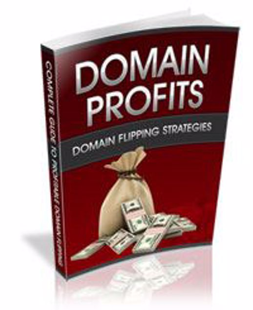Picture of Domain Profits