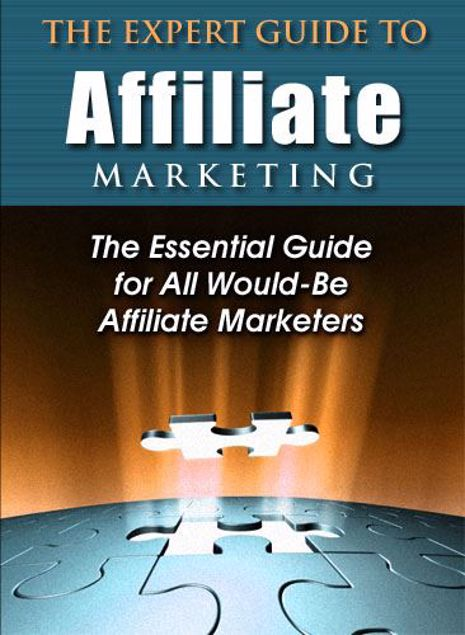 Picture of Expert Guide To Affiliate Marketing
