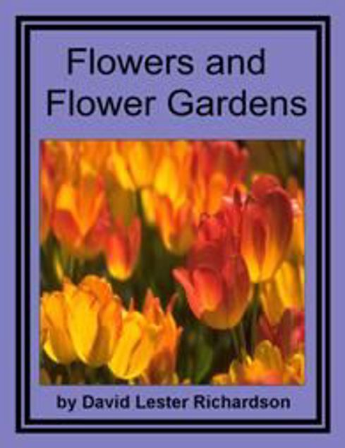 Picture of Flowers And Flowers Garden