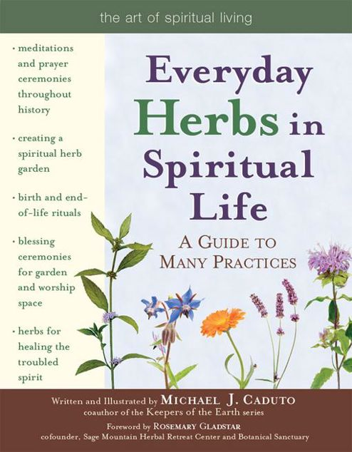 Picture of Everyday Herbs in Spiritual Life: A Guide to Many Practices