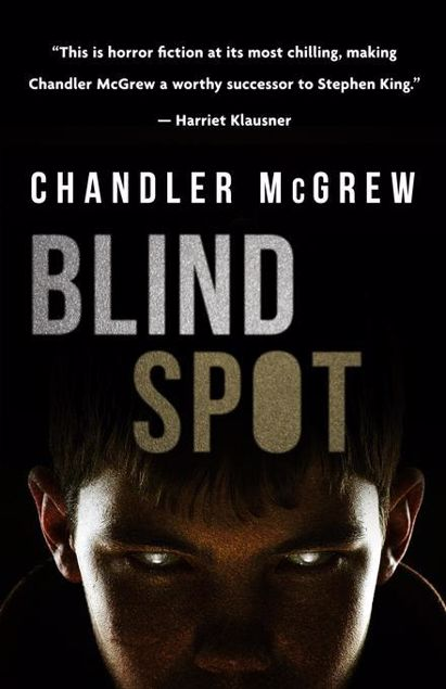 Picture of Blind Spot