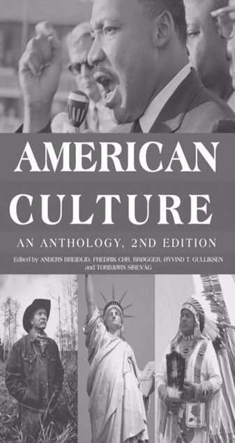 Picture of American Culture: An Anthology