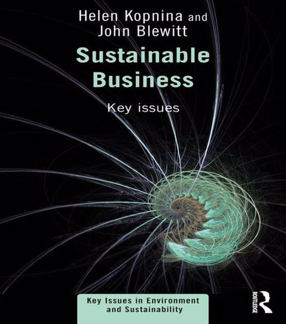 Picture of Sustainable Business: Key Issues