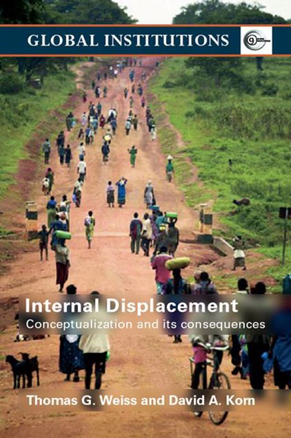 Picture of Internal Displacement: Conceptualization and Its Consequences