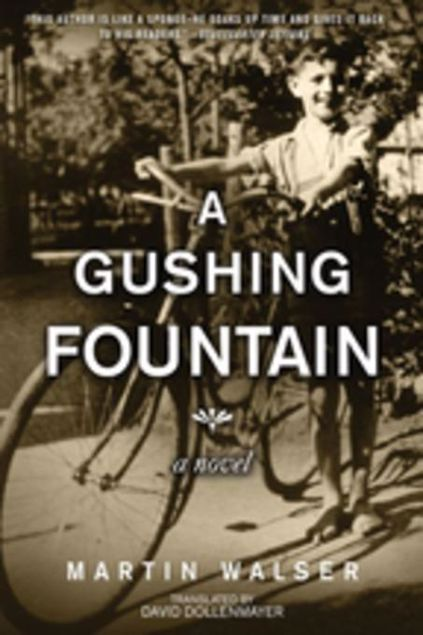 Picture of A Gushing Fountain: A Novel