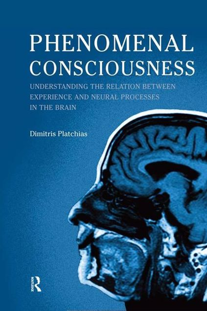 Picture of Phenomenal Consciousness: Understanding the Relation Between Experience and Neural Processes in the Brain