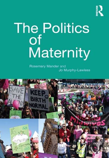 Picture of The Politics of Maternity