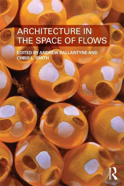 Picture of Architecture in the Space of Flows