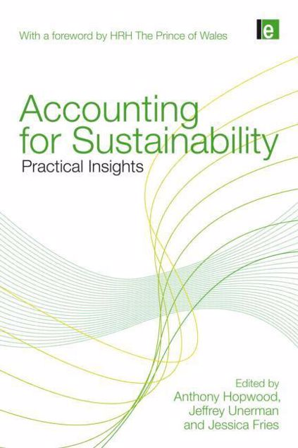 Picture of Accounting for Sustainability: Practical Insights