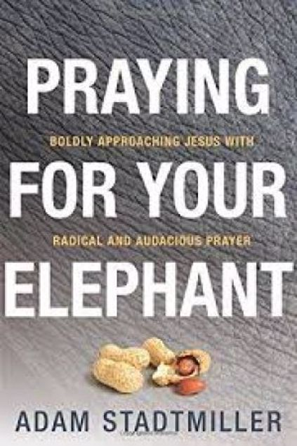 Picture of Praying For Your Elephant P/C