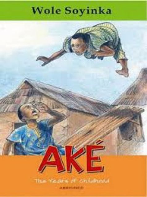Picture of Akã©: The Years Of Childhood