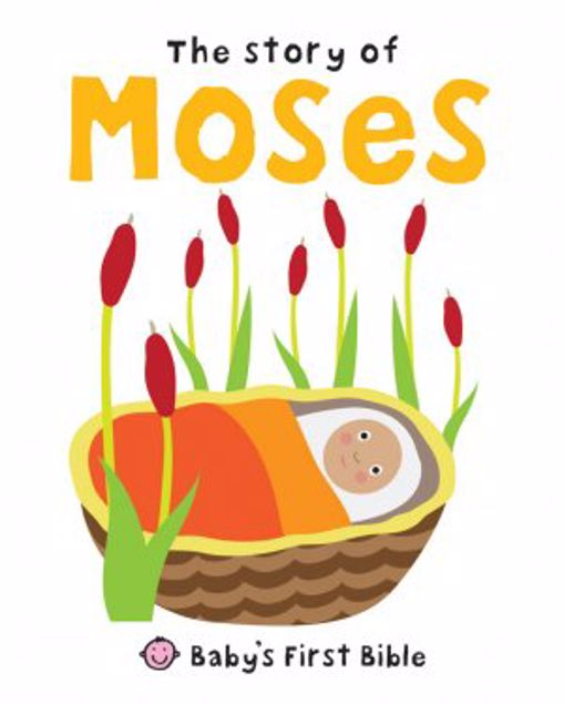 Picture of The Story Of Moses (Baby's First Bible)