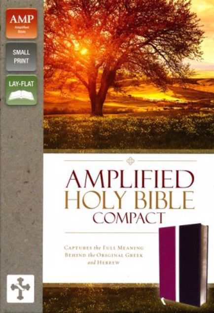 Picture of Amplified Compact Holy Bible