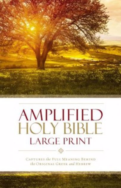 Picture of Amplified Holy Bible - Large Print