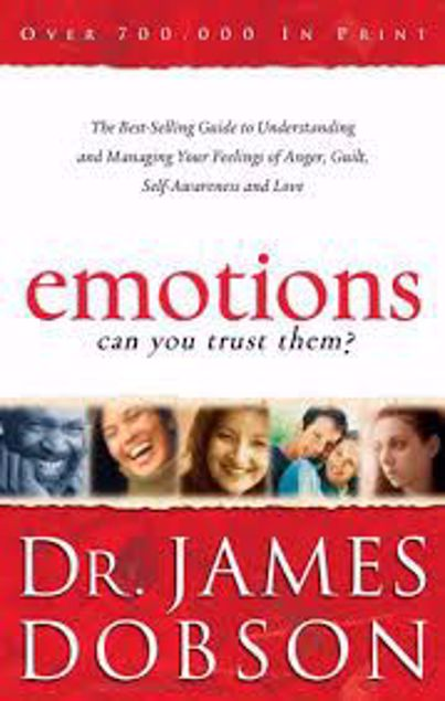 Picture of Emotions: Can You Trust Them?