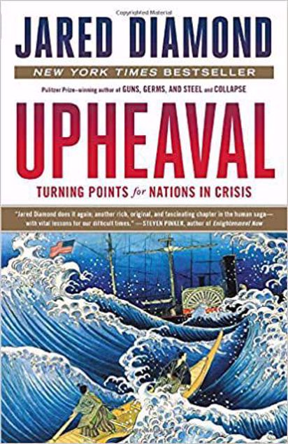 Picture of Upheaval: Turning Points for Nations in Crisis