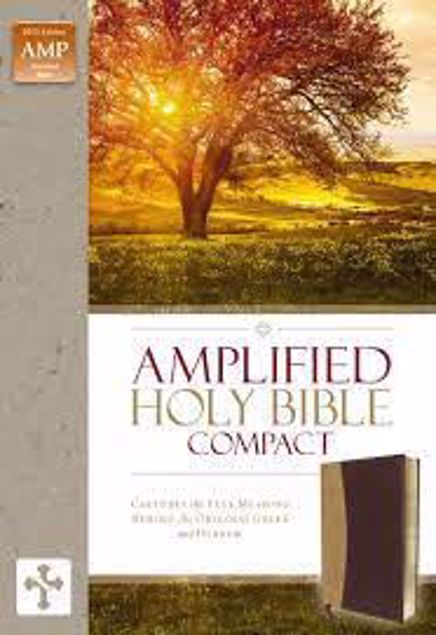 Picture of AMPLIFIED HOLY BIBLE COMPACT-DUO